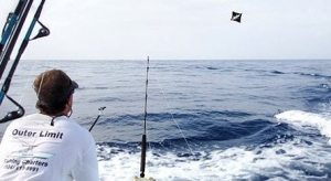 Deep Sea Offshore Kite Fishing Charters in Venice Louisiana