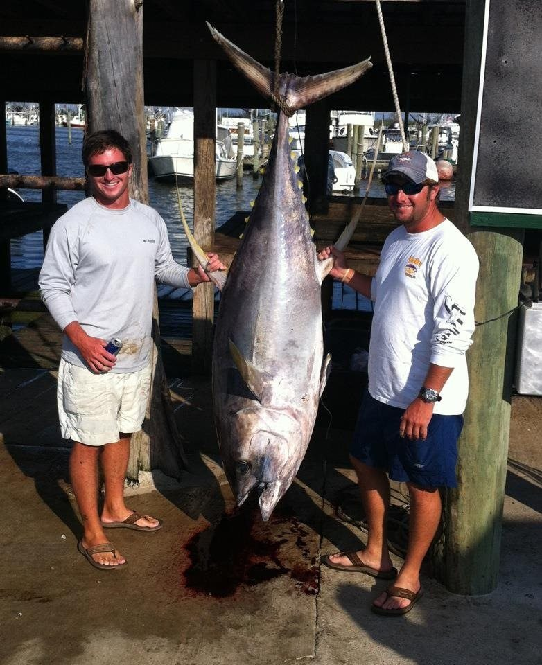 Venice offshore tuna fishing charters louisiana 24 for Tuna fishing louisiana