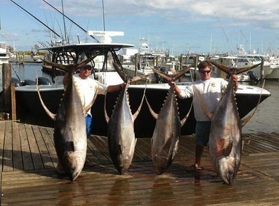 Tuna Fishing Charters Venice LA